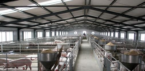 畜牧业采暖为何摒弃传统采暖方式 选用空气能地暖?