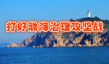 打好渤海治理攻坚战  力争2020年优质水域超七成